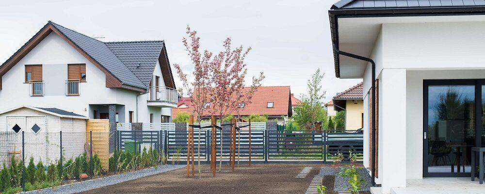 Ogród minimalistyczny – Esencja zieleni